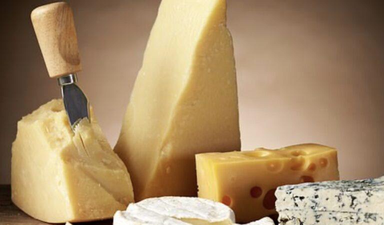 Het eten van kaas kan je longen beschermen tegen astma en emfyseem, volgens nieuw onderzoek
